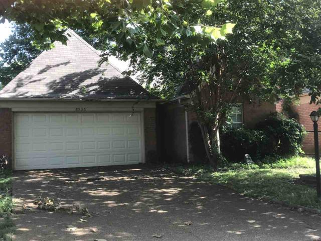 8936 Lake Springs Cv, Memphis, TN 38016 (#10032321) :: The Wallace Group - RE/MAX On Point