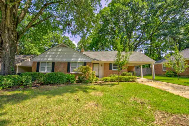 5368 Chickasaw Rd, Memphis, TN 38120 (#10032379) :: The Wallace Group - RE/MAX On Point