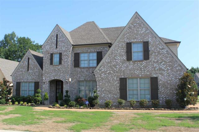 568 Catamount St, Collierville, TN 38017 (#10032419) :: The Wallace Group - RE/MAX On Point