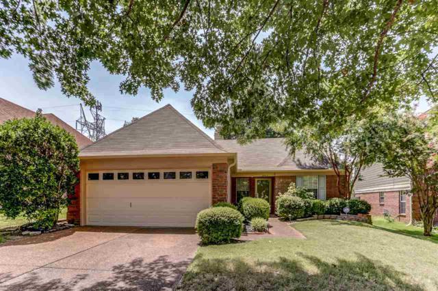 8917 Fulton Cv, Memphis, TN 38016 (#10032497) :: ReMax Experts