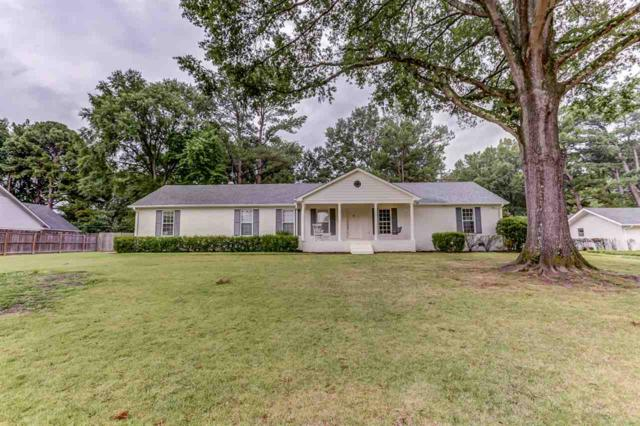 6667 Massey Ln, Memphis, TN 38120 (#10033887) :: The Wallace Group - RE/MAX On Point