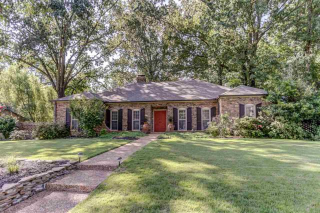 6751 Wild Berry Ln, Memphis, TN 38119 (#10034130) :: The Melissa Thompson Team