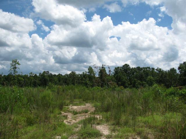 1 Bruce Dr, Savannah, TN 38372 (#10034205) :: The Home Gurus, PLLC of Keller Williams Realty