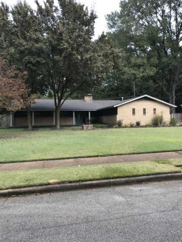 5312 S Angela Rd, Memphis, TN 38120 (#10034240) :: The Melissa Thompson Team