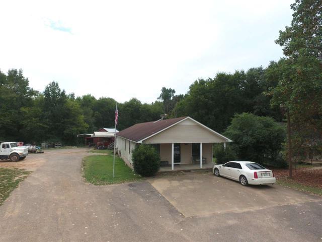 581 Hinton Rd, Counce, TN 38326 (#10034271) :: The Home Gurus, PLLC of Keller Williams Realty