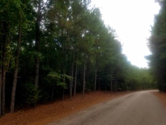 00 Hardin Graveyard Rd, Enville, TN 38332 (#10034452) :: The Melissa Thompson Team