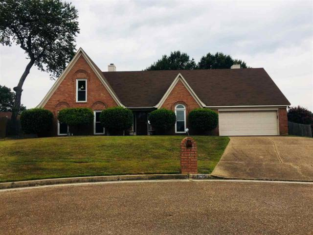 4295 Willow Pond Cv, Unincorporated, TN 38125 (#10034658) :: The Melissa Thompson Team