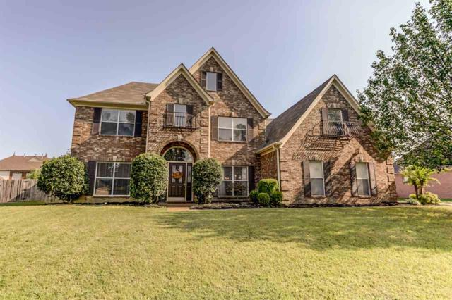 12290 Afton Pl, Arlington, TN 38002 (#10035044) :: The Melissa Thompson Team