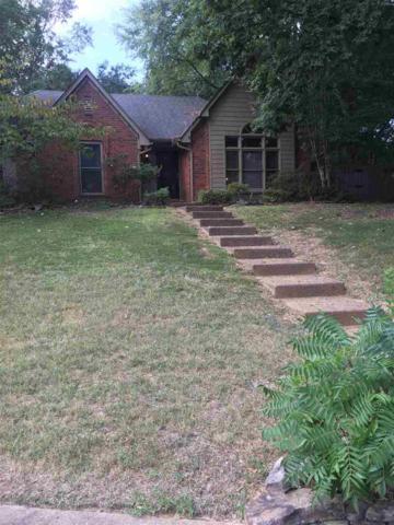281 Crestmont Cv, Memphis, TN 38018 (#10035283) :: The Melissa Thompson Team