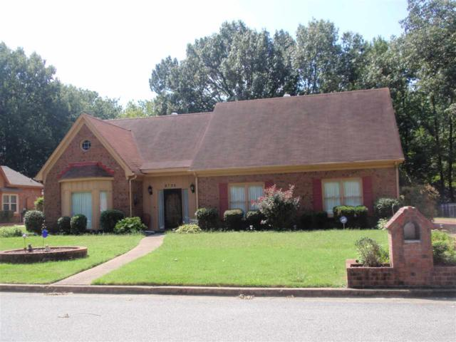 6725 Kirby Trace Cv, Memphis, TN 38119 (#10035506) :: The Melissa Thompson Team