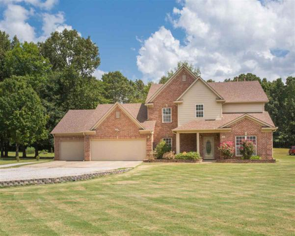 380 Catalpa Dr, Unincorporated, TN 38028 (#10035587) :: All Stars Realty