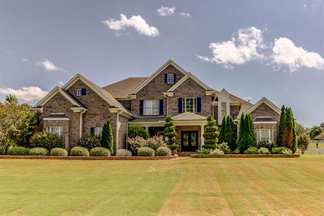 294 Southmill Dr, Unincorporated, TN 38028 (#10035836) :: The Wallace Group - RE/MAX On Point