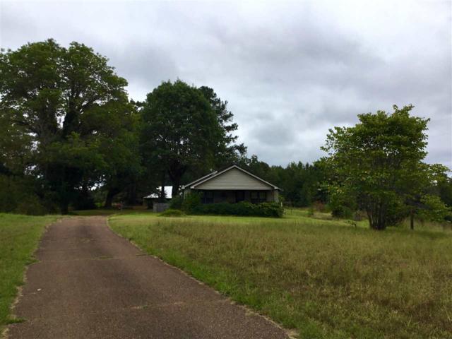 2596 Sandy Flatt Rd, Bethel Springs, TN 38315 (#10036656) :: The Melissa Thompson Team