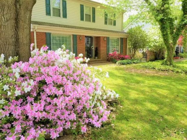 6995 Stillbrook Dr, Germantown, TN 38138 (#10037183) :: The Wallace Group - RE/MAX On Point