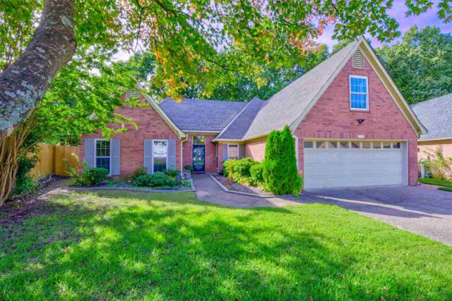 6504 Belmont Cv, Bartlett, TN 38135 (#10039344) :: All Stars Realty