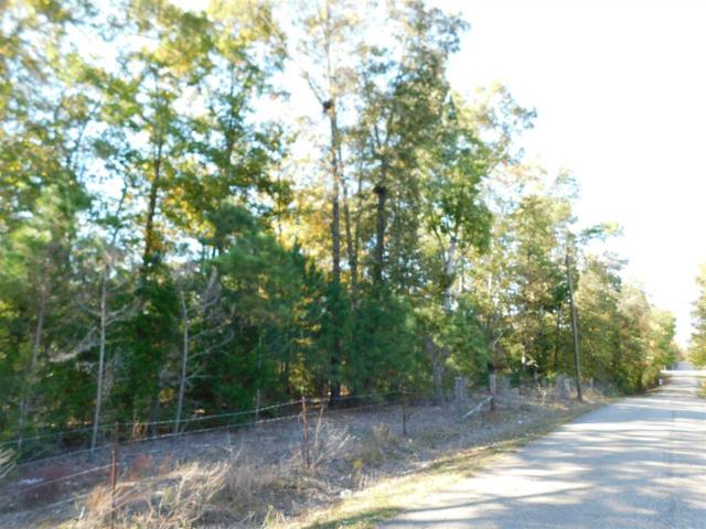 3 Caney Branch Rd, Adamsville, TN 38310 (#10039898) :: RE/MAX Real Estate Experts