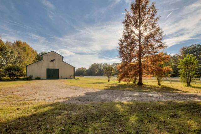 9735 Moose Rd, Unincorporated, TN 38053 (#10039945) :: The Melissa Thompson Team