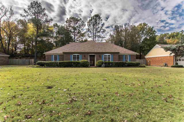 7617 Hollow Fork Dr, Germantown, TN 38138 (#10040589) :: All Stars Realty