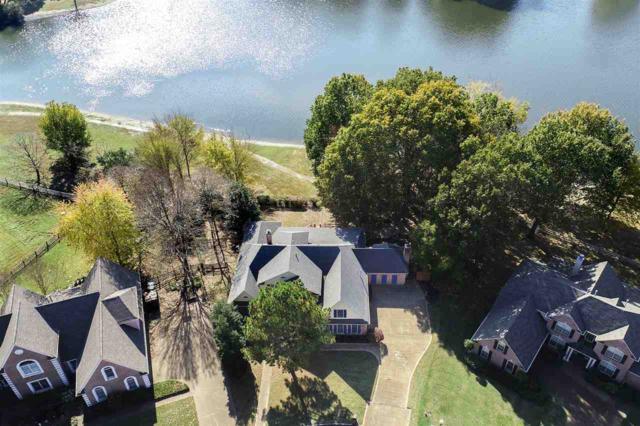 8773 Becca Pt, Memphis, TN 38016 (#10040619) :: RE/MAX Real Estate Experts