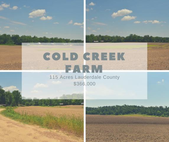 Cold Creek Rd, Henning, TN 38041 (#10040742) :: RE/MAX Real Estate Experts