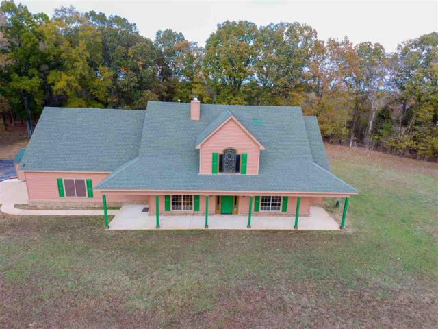 3695 Jenkins Dr, Unincorporated, TN 38066 (#10040745) :: RE/MAX Real Estate Experts