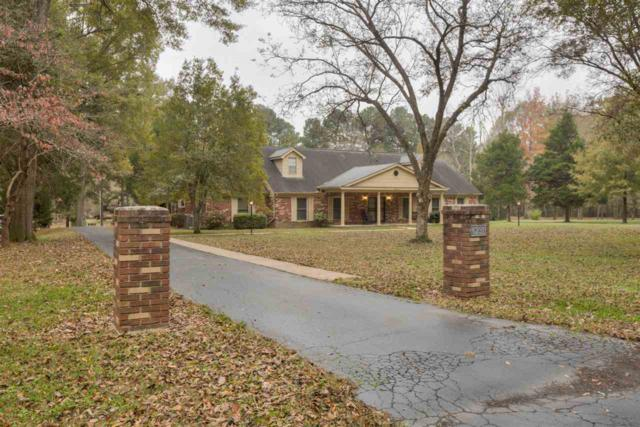 6231 Royal Mews Dr, Unincorporated, TN 38053 (#10040778) :: RE/MAX Real Estate Experts
