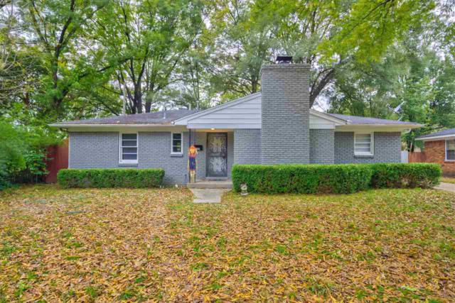 1663 Whitewater Rd, Memphis, TN 38117 (#10040813) :: RE/MAX Real Estate Experts