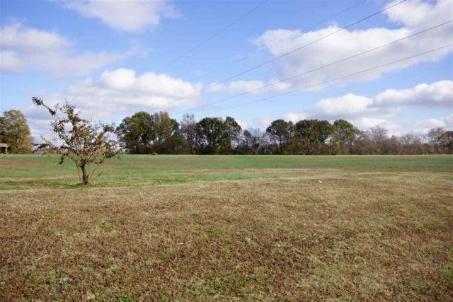 560 Crooked Creek Dr, Unincorporated, TN 38060 (#10041024) :: ReMax Experts