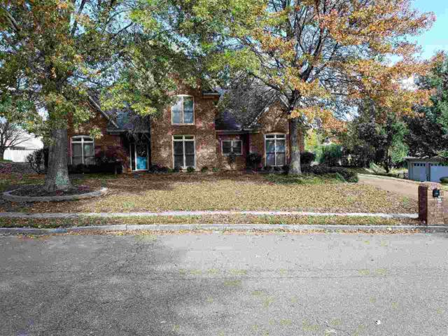 9520 Morning Woods Dr S, Memphis, TN 38016 (#10041067) :: ReMax Experts