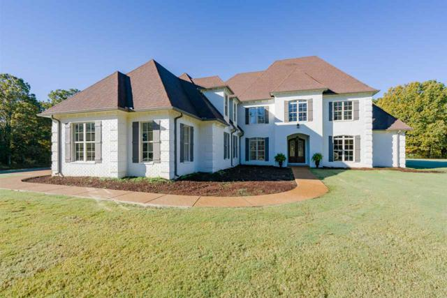 20 Clarendon Cv, Unincorporated, TN 38028 (#10041321) :: The Wallace Group - RE/MAX On Point