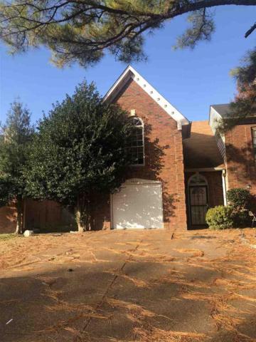5576 Blossom Ln, Memphis, TN 38115 (#10041375) :: RE/MAX Real Estate Experts