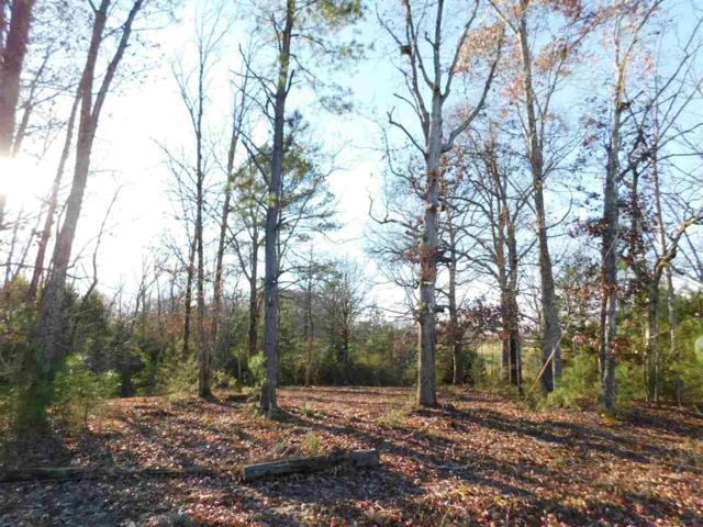 10 Caney Branch Rd, Adamsville, TN 38310 (#10041766) :: ReMax Experts