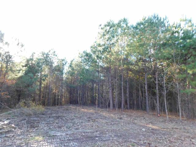 6 Caney Branch Rd, Adamsville, TN 38310 (#10041772) :: ReMax Experts