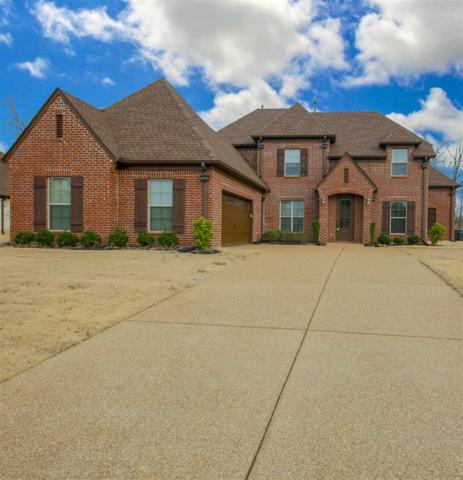 185 Mallard Ln, Rossville, TN 38066 (#10043113) :: The Melissa Thompson Team
