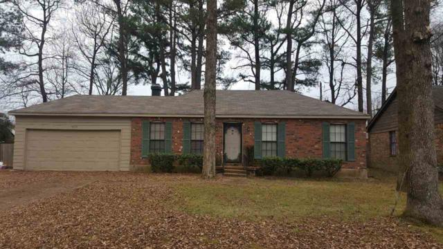 4578 Sandy Park Dr, Memphis, TN 38141 (#10043310) :: The Melissa Thompson Team