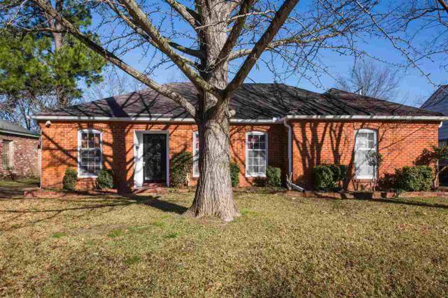 4592 Dunn Rd, Memphis, TN 38117 (#10043506) :: All Stars Realty