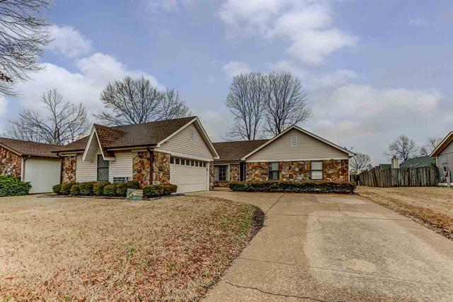 3422 Brownbark Dr, Memphis, TN 38115 (#10043566) :: The Melissa Thompson Team