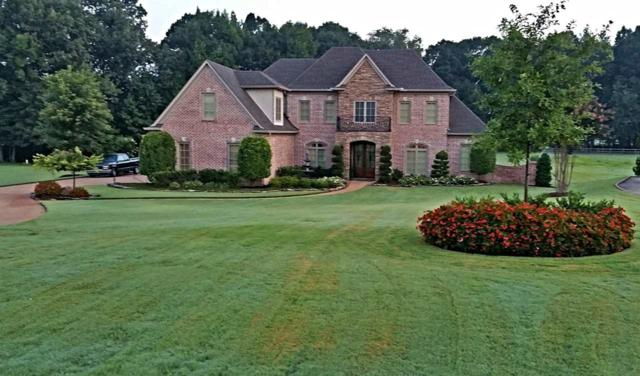 75 Brighton Cv, Eads, TN 38028 (#10043766) :: The Wallace Group - RE/MAX On Point