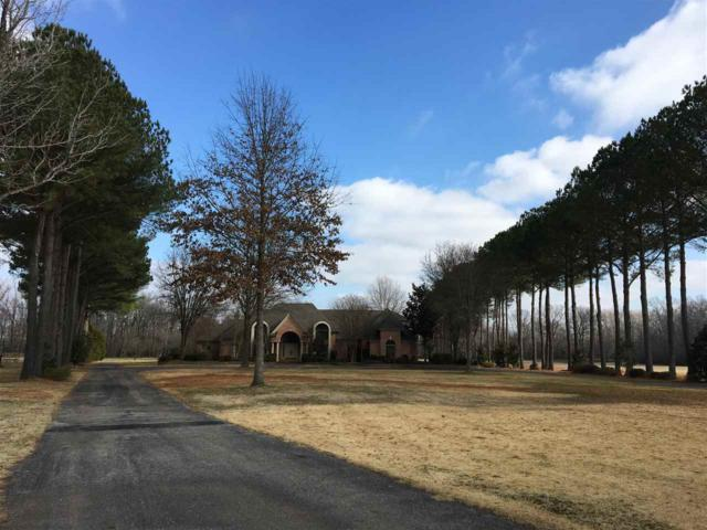 9496 Rocky Hills Dr, Unincorporated, TN 38018 (#10044161) :: ReMax Experts