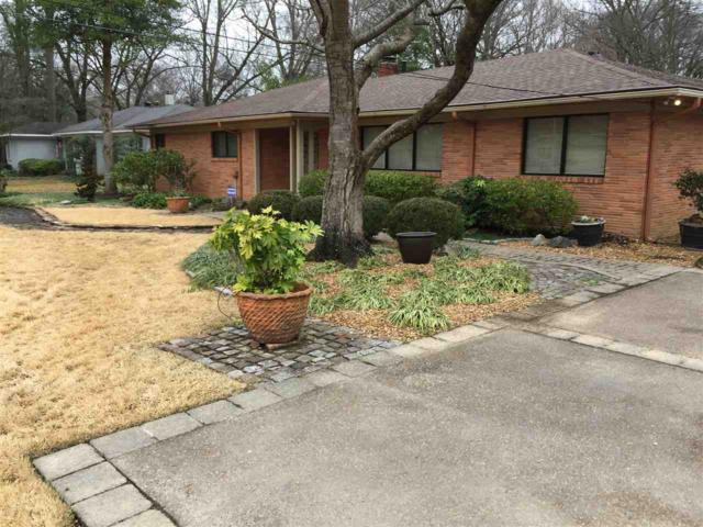 5170 Cole Rd, Memphis, TN 38117 (#10044218) :: The Wallace Group - RE/MAX On Point