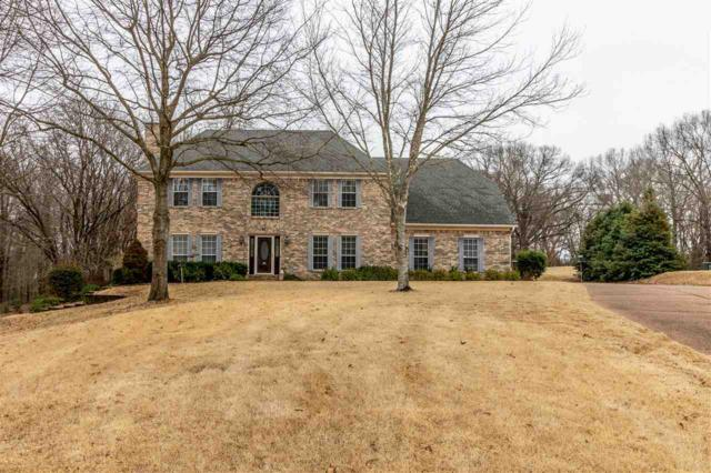 45 High Plains Cv, Unincorporated, TN 38028 (#10044365) :: The Wallace Group - RE/MAX On Point