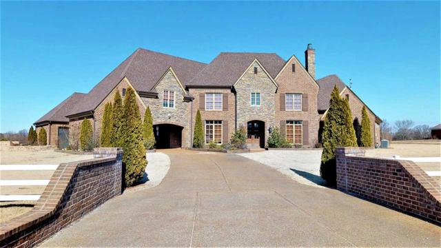 3030 Clay Pond Dr, Unincorporated, TN 38060 (#10045014) :: The Melissa Thompson Team