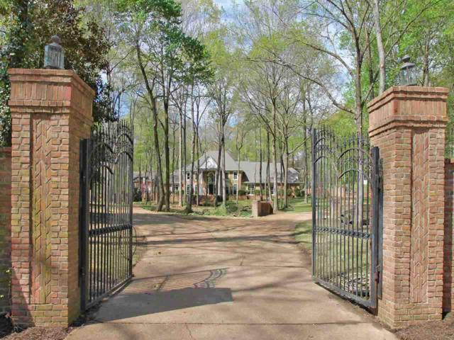 9378 Zachariah Cv, Bartlett, TN 38133 (#10045664) :: RE/MAX Real Estate Experts
