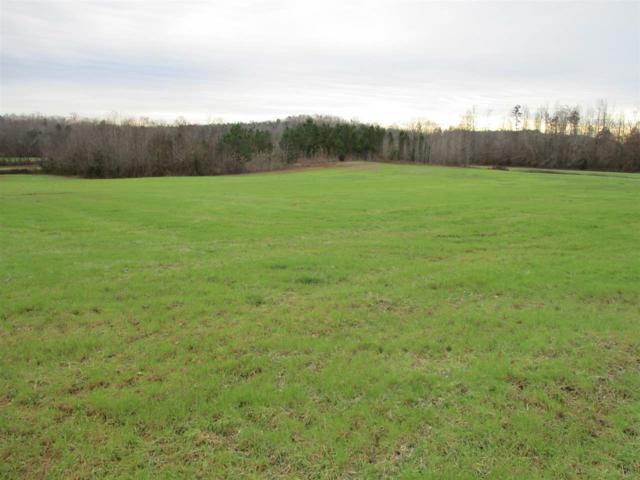 4905 Old Patterson Rd, Bethel Springs, TN 38315 (#10046165) :: JASCO Realtors®