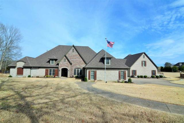 50 Salisbury Cv, Unincorporated, TN 38028 (#10046272) :: All Stars Realty
