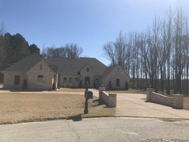 9965 Garden Trail Cv, Collierville, TN 38017 (#10047416) :: RE/MAX Real Estate Experts
