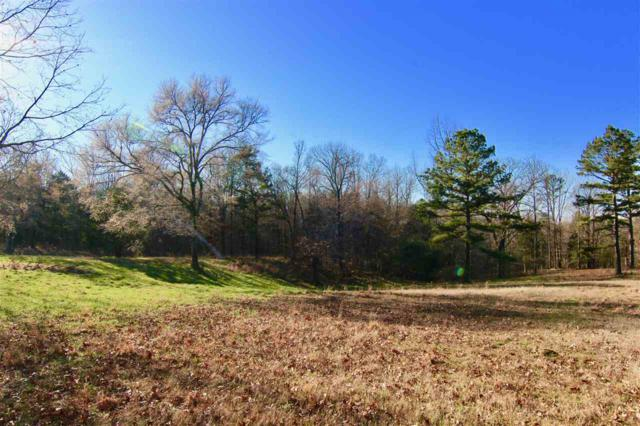 4405 Powell Chapel Rd, Middleton, TN 38052 (#10047572) :: RE/MAX Real Estate Experts