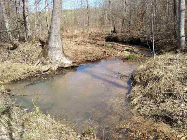 LOT 1 641 Hwy, Clifton, TN 38425 (#10048187) :: The Wallace Group - RE/MAX On Point