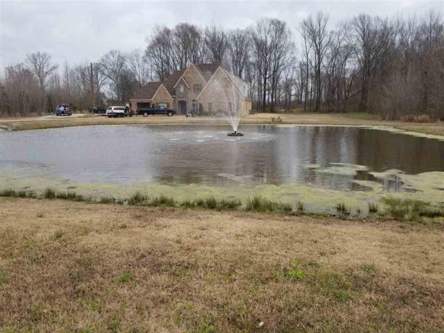 20900 Hwy 196 Hwy, Unincorporated, TN 38002 (#10048268) :: The Wallace Group - RE/MAX On Point
