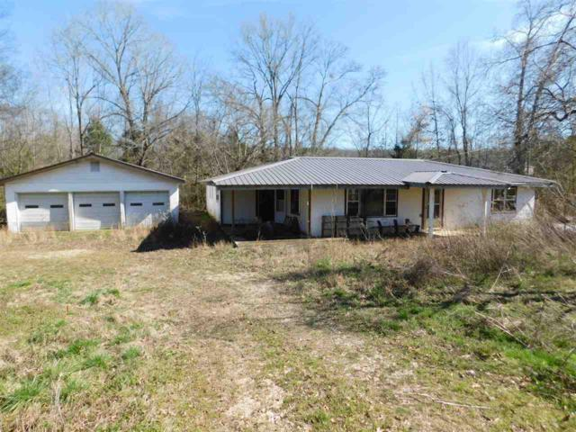 6540 Michie Pebble Hil Rd, Michie, TN 38357 (#10048374) :: All Stars Realty